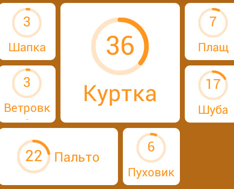verxnyaya-odejda